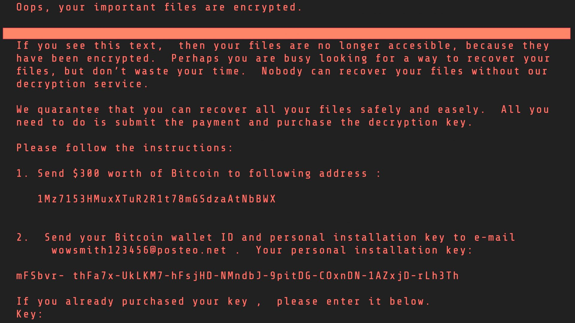 Petya Ransomware display. Computer screen with the Petya virus display. Cyber attack concept